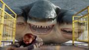 鯊魚竟長出腿,瘋狂報復人類,看完你知道為什么嗎?